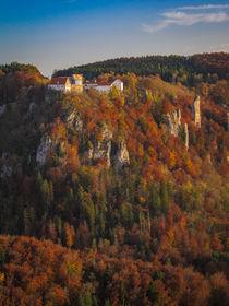 Burg Wildenstein vom Eichfelsen aus gesehen - Naturpark Obere Donau von Christine Horn