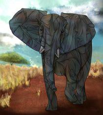 African Elephant von Ben Geiger