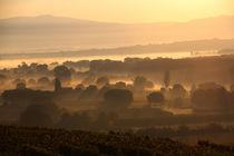 Nebel über dem Breisgau by frakn