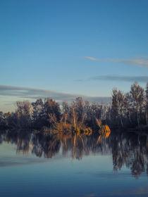 Herbstabend am Nillsee - Pfrunger-Burgweiler Ried von Christine Horn
