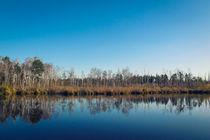 Ein Herbsttag am Fünfeckweiher im Pfrunger-Burgweiler Ried von Christine Horn