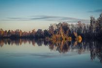 Herbst am Nillsee - Pfrunger-Burgweiler Ried by Christine Horn