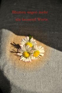 Sag es mit Blumen by alana