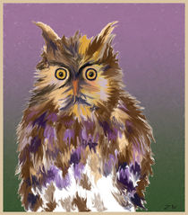 Owl by Zeke Nord