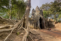Ta Phrom Tempel, Angkor Wat Tempel, Kambodscha, von travelstock44