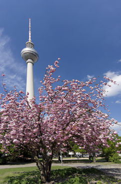 Berlin-13-4867-ts44