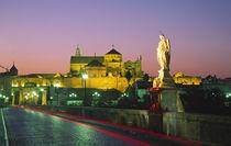 Puente Romana, Mequita, Cordoba, Spanien von travelstock44