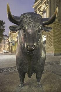 Bulle, Frankfurter Börse, Frankfurt von travelstock44