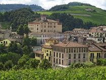 Weinanbau in Barolo, Schloss,  Provinz Piemont, Italien von travelstock44