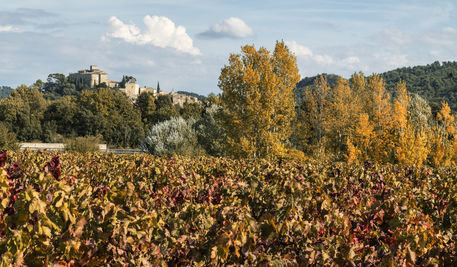 Provence-10-15-ts44-2647