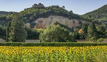 Rustel Colorado, Ocker, Sonnenblumen, Luberon, Provence  von travelstock44