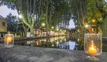 Etang, Dorfzentrum Cucuron, Platanen, Provence von travelstock44