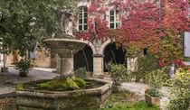 Saignon, Brunnen, Provence, Frankreich  von travelstock44