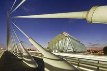 Puente de l'Assut de l'Or,  Wissenschaftsstadt von Santiago Calatrava in Valencia von travelstock44