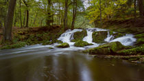 Selkefall (Harz) im Herbst by Andreas Levi