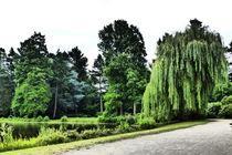 Parklandschaft von maja-310