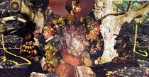 Arcimboldo Reinvisoned von julia still