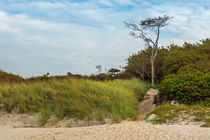 Am Weststrand bei Prerow by Christoph  Ebeling