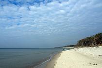 Strand am Darsser Urwald  von Christoph  Ebeling