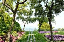 Ravello, Amalfi Coast, Italy - Belvedere Principessa di Piemonte gardens von Tania Lerro