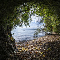 Traunsee by Michaela Pucher
