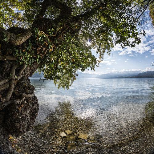 022-copyright-photo-michaela-pucher-mp00368-1