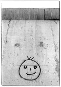 Abbau der Berliner Mauer 1991 von Dieter E. Hoppe