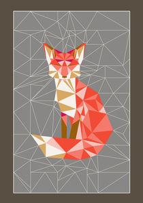 fox geodesic von Nadja Petremand