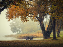 Herbstliche Ruhe am See by Christine Horn