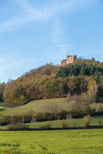Burgruine von Stephan Gehrlein