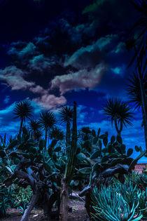 Dunkelheit by Stephan Gehrlein