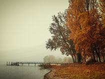 Herbst auf der Halbinsel Höri - Bodensee by Christine Horn