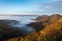 Nebel im Rheintal von Frank Landsberg