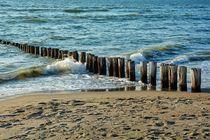 Holzbuhnen in den Wellen von Claudia Evans
