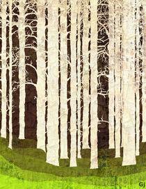 Crumpletrees by garrisonjames