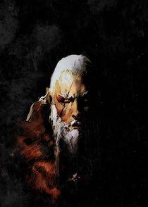 The Witcher: Battle-Scarred Geralt von succulentburger