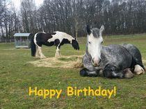 Happy Birthday von der Pferdeweide von Andrea Köhler