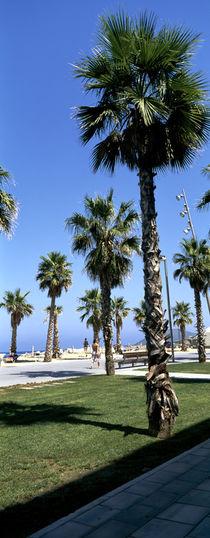 Barcelona. Barceloneta Beach. by li-lu