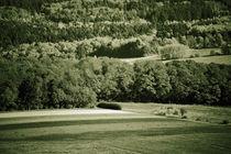 Taunusgebirge von Bastian  Kienitz