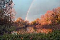 Regenbogen über dem Wuhletal  von Christoph  Ebeling
