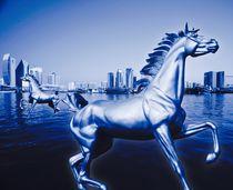 Dubai by Rainer Stocké