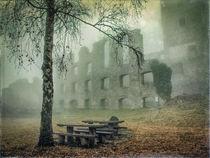 Festungsruine Hohentwiel im Nebel von Christine Horn
