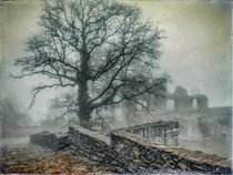Festungsruine Hohentwiel im Nebel II by Christine Horn