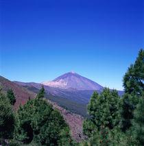 Der vulkanische Berg. Tenerife - Pico del Teide von li-lu