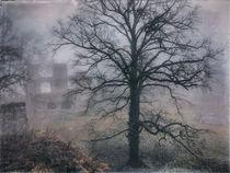 Festungsruine Hohentwiel im Nebel III by Christine Horn