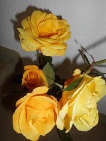 Herbstrosen von rosenlady