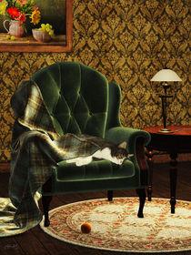 Schlafende Katze von fantasy-art-3d