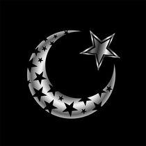 The Islamic star  by Shawlin I