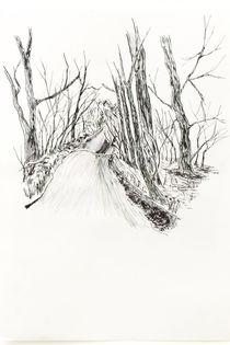 Country lane von Mark Rosser
