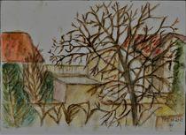 Nußbaum im November by Ursula Huber